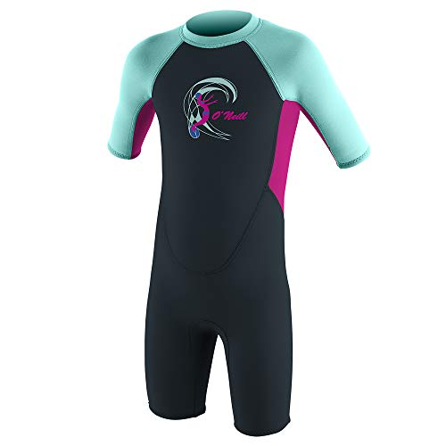 O'Neill Toddler Reactor-2 2mm Back Zip Short Sleeve Spring Wetsuit, Slate/Berry/Seaglass, 6