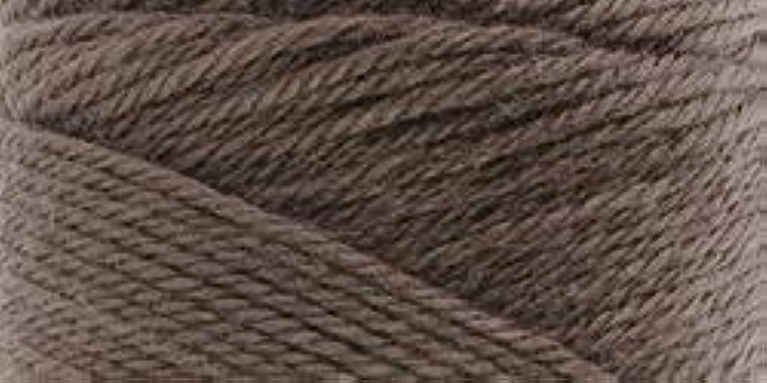 Bulk Buy: Caron Simply Soft Yarn Solids (3-Pack) Taupe H97003-9783 lamf859292368026