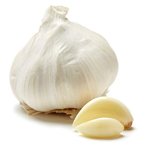 Organic Garlic, One Medium