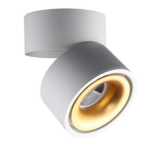 A-Lnice Projecteur monté au Plafond LED, Downlight monté en Surface, Blanc Chaud 10W, éclairage d'appoint idéal pour la Cuisine et Le Salon