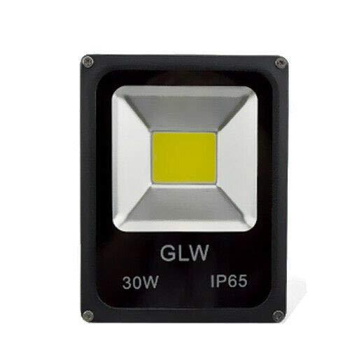 10/30/50W Foco LED 12V Frío / Blanco Cálido Luz Exterior Impermeable IP65