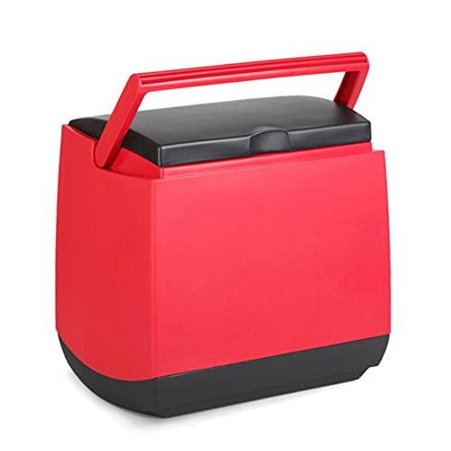 NOVHOME Mini Nevera Portatil Coche, Coche de 25l al Aire Libre Incubadora PortáTil para 12V / 220V Puede Colocar 14 Botellas de Agua Purificada de 550 Ml