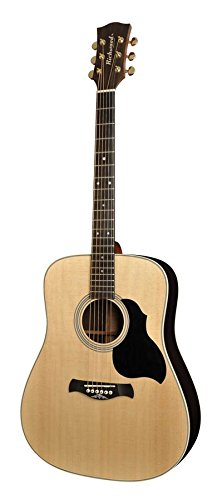 Richwood DS-60 Gitarre
