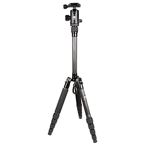 Sirui T-025x Carbon Fiber Tripod with C-10 Ball Head