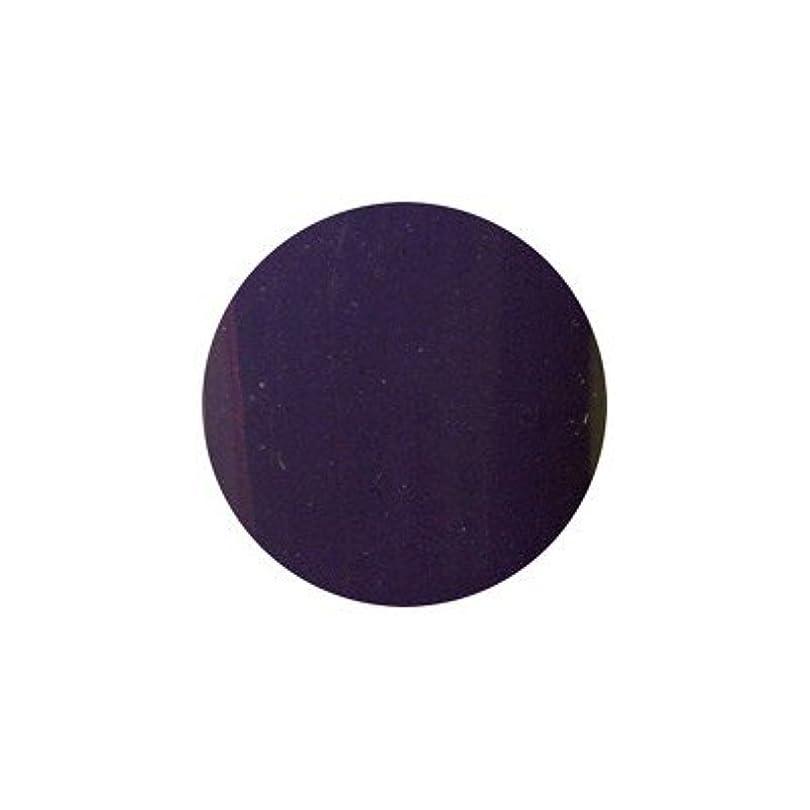 大邸宅スライム国ロコジェル カラージェル M-43 ベリーベリー 4g