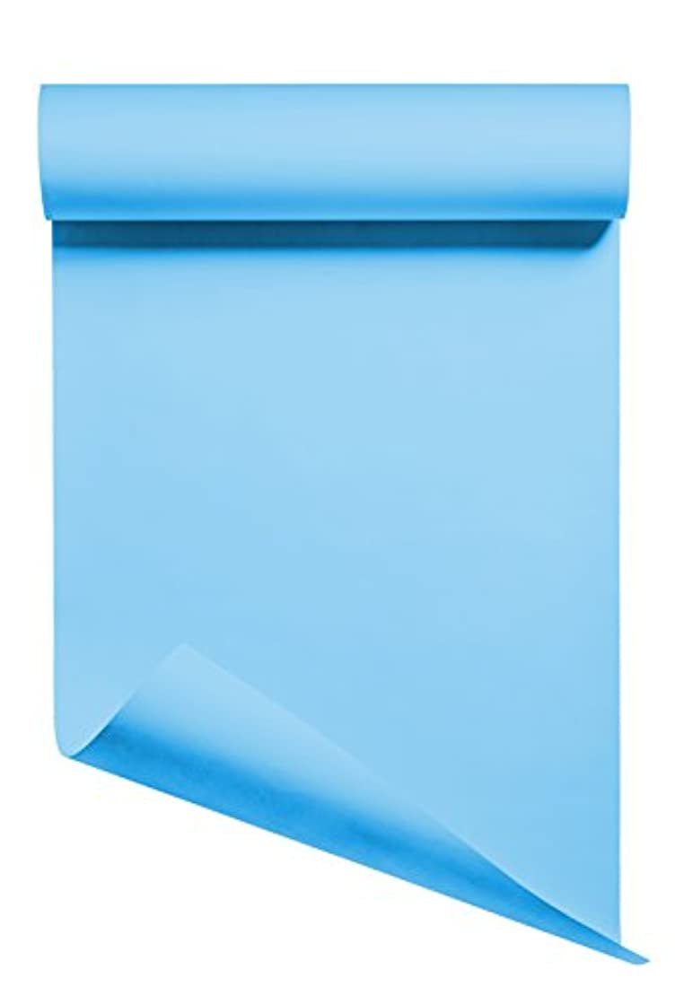 Heat Transfer Vinyl HTV/Iron-on 12 Inches by 3 Feet Roll (Pale Blue)