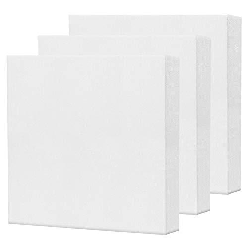 AvoDovA 3PCS Lienzos para Pintar, Lienzos Enmarcados, Artista Lienzo en Blanco para Pintura al óleo Acrílica, Lienzo Estirado Panel de Lona, Paneles de Lienzo para Pintar, Lienzo Bastidor (20 * 20cm)