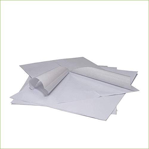Palucart Etichette adesive carta vellum 160 gr formato a4 etichette multiuso 100 fogli intero autoadesivo permanente per stampanti 1 etichetta per foglio
