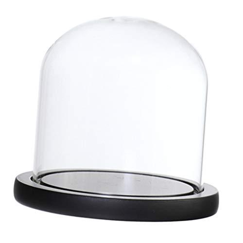 Glashaube DIY Deko Glaskuppel Glassturz Glasglocke mit Holz Basen - Schwarz E