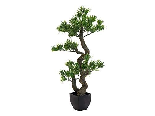 EUROPALMS Bonsai Pinie, Kunstpflanze, 70cm | Dekorativer Bonsai mit attraktiver Wuchsform aus PE