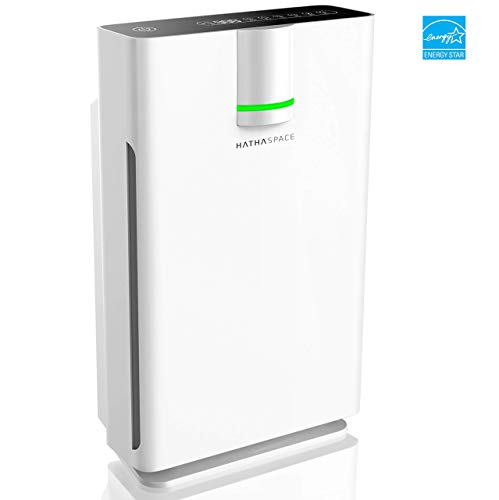 Hathaspace Smart True HEPA Air Purifier 2.0 for Extra-Large...