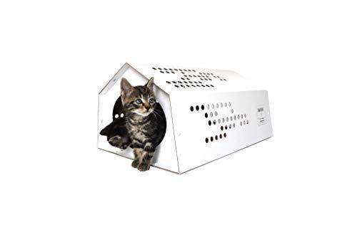 KarTent - CatTent de tent voor katten - Duurzaam Karton