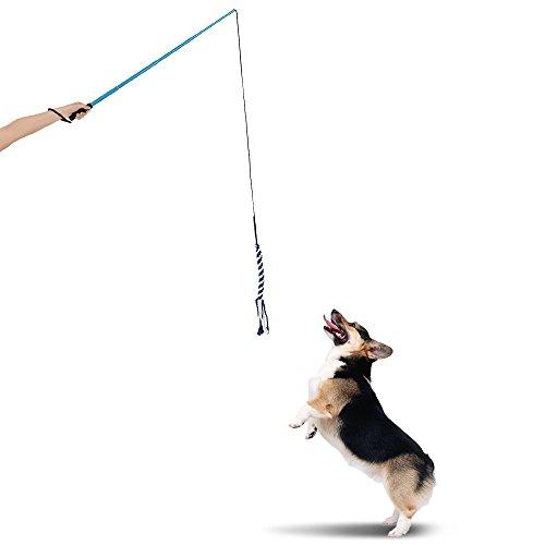 Galapara Reizangel/Tauspielzeug für Hunde, Interaktive Spielzeuge für Hunde, Ausziehbare Hundewelpen Teaser Pole Wand im Freien Interactive Haustier Hund Flirt Pole Training Exercise Seil Spielzeug