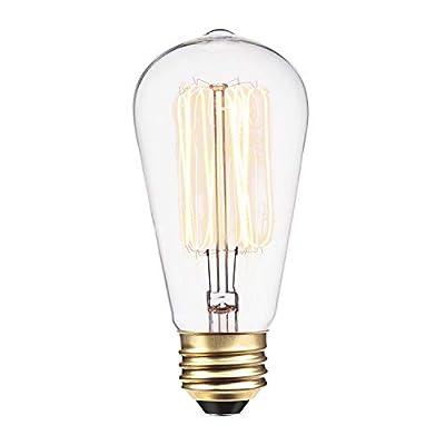 Globe Electric 01321, E26 Standard Base, 220 Lumens 60W Vintage Edison S60 Squirrel Cage Incandescent Filament Light Bulb, 1 Pack