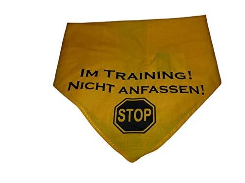 Hundehalstuch Im Training! Nicht Anfassen! Stop