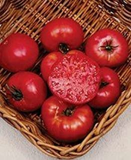 Tomato Mortgage Lifter Great Heirloom Garden Vegetable Seeds By Seed Kingdom 30 Seeds