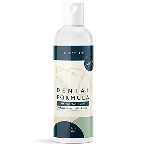 Petlab Co Dental Wash | Dog Mouthwash amp Teeth Cleaner | Dental Water Solution Targets Plaque amp Tartar | Maintains Clean Teeth amp Supports Gum Health amp Fresh Breath 1Pack