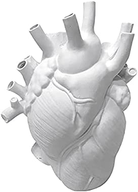 Didad Anatomical Heart Shape Flower Vase Style Flower Pot Art Vases Sculpture Desktop Plant Pot for Home Decor Ornament
