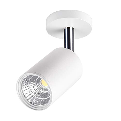 BRILLRAYDO 7W LED Ceiling Directional Spotlight Surfaced Mount Light Adjustable Picture Project Black Nature White