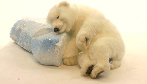 Baby Polar Bear 12 Inch by Hansa