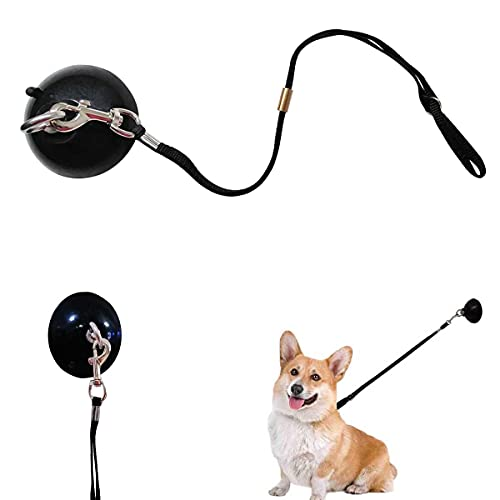 YELL Dog Bathing Suction Cup Tether,Dog Grooming Tub Restraint and Pet Bathing Tether - Any Size Dog Cat