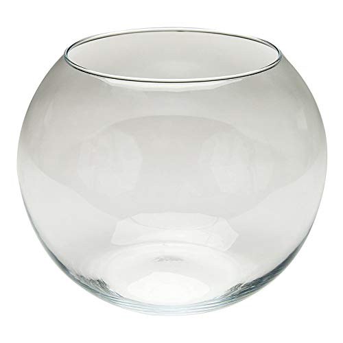 MYYYYI Glaskuppel Fischbecken Miniatur Landschaft Tischplatte Display Aquarium Fleischig AquaScape Handwerk 15 cm