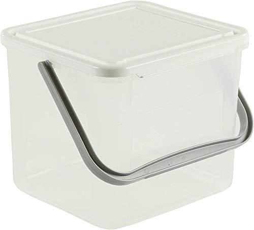 Rotho Basic Aufbewahrungsbox 5l mit Deckel und Henkel, Kunststoff (PP) BPA-frei, transparent/weiss, 3kg/5l (21,0 x 20,0 x 18,0 cm)