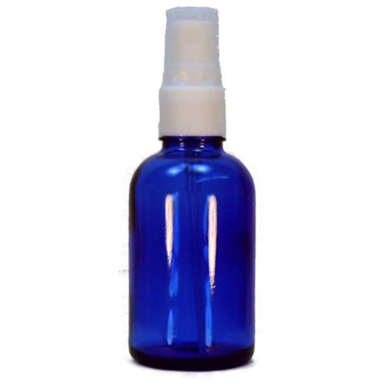 除去メルボルン影響スプレーボトル ブルー 30ml 6本セット