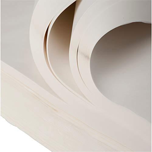 BB-Verpackungen weiße, 5 kg, Juwelierseide 50 x 75cm, Farbe: weiß, holzfrei Packseide Seidenpapier Geschirrpapier - 3