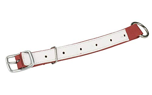 Agrarflora Halsriemen für Schafe und Ziegen, Rot, 60cm, mit Leder verstärkt, verstellbares Halsband mit Schnalle und D-Ring