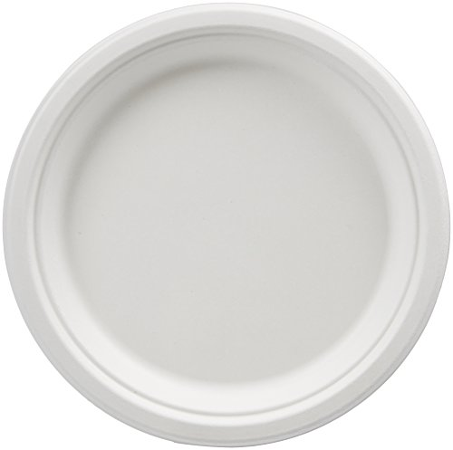 Amazon Basics Compostable Plates, 9-Inch, Pack of 500