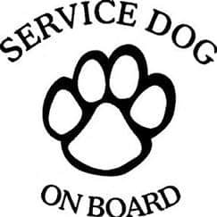 Chase Grace Studio Service Dog On Board Vinyl Decal Sticker|White|Therapy Dog Canine K9 Vinyl Decal Sticker|Cars Trucks Vans SUV Boats Kayak| 5.5' x 5.5'|CGS146