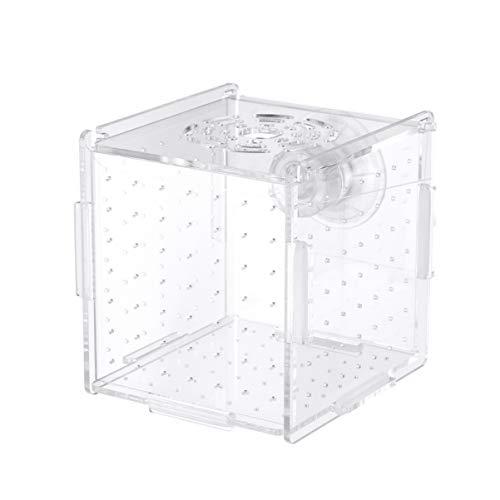 Balacoo Transparente Acryl-Fischbrüterbox mit Saugnapf Desktop Wasserpumpe Filter für Fische Garnelen Clownfish Guppy