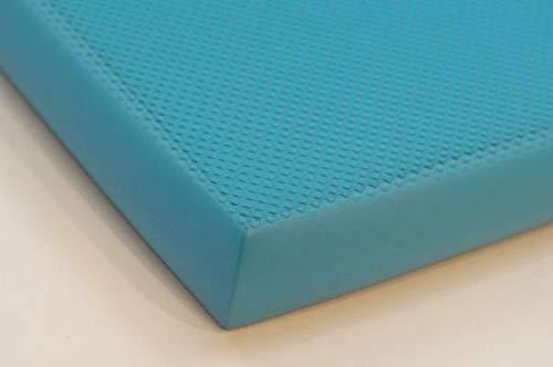 AIREX BALANCE PAD ELITE 50x 41cm–blau