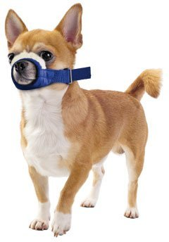 Xxsmall, Cozy Quick Muzzle Blue