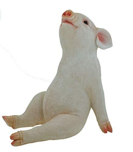 AM-Design Rosa Sterngugger Glücksschwein Schwein Gartenfigur Garten Figur Skulptur Tier Tierfigur