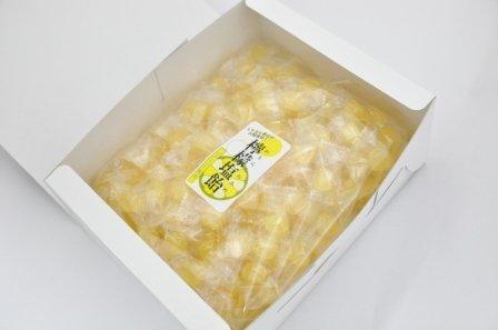 夏のギフト レモン塩飴(レモン塩あめ)1kg ギフト