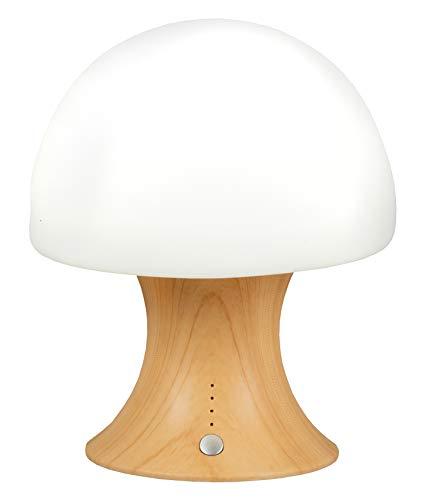 LED Tischlampe mit Akku und Farbwechel, Nachttischlampe Nachtlicht Stimmungslicht Nachttischleuchte Nachtlampe Tischleuchte Kabellos