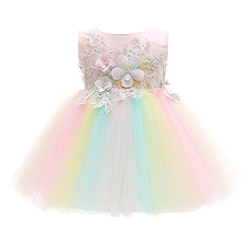 Xangirl Baby Girls Party Dress, Rainbow Tulle 3D Embroidery Beading Princess Tutu Dresses Wedding Pageant Party Birthday Formal Dress for 6-12 Months Baby Girl