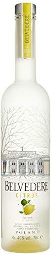 Belvedere Citrus Wodka (1 x 0.7 l)