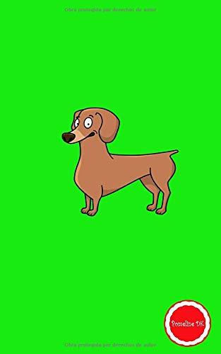 Pomeline DK: Leocadie Cuaderno de notas A5 pequeño tapa blanda de rayas libreta de viaje teckel dachshund perro salchicha amante de los perros perrito ... escribir idea de regalo cumpleaños fiesta