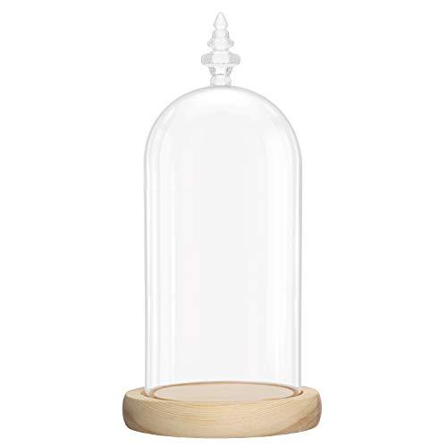 BELLE VOUS Cúpula Cristal Jarra Domo Campana con Base de Madera Natural – 26,5 cm - Campana Cristal Decorativa Transparente Centro de Mesa con Base para Luces de Hada - Urna de Cristal Antigüedades