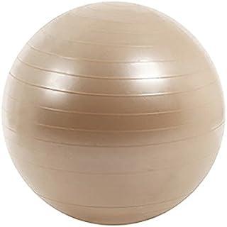 RIORES(リオレス) バランスボール 65cm [アンチバーストタイプ] フットポンプ付