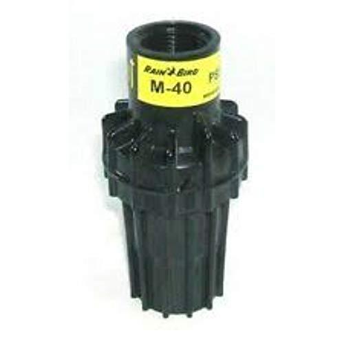Rain Bird Reductor de presión/Reductor Presión/Regulador 3/4 X 3/4 IG psi-m40