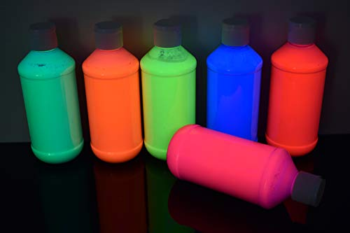 DirectGlow 8oz UV Blacklight Reactive Fluorescent Acrylic Paints (6 Color Neon Assortment)