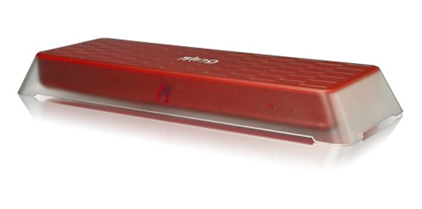 Sling Media Slingbox PRO (SB200-100)