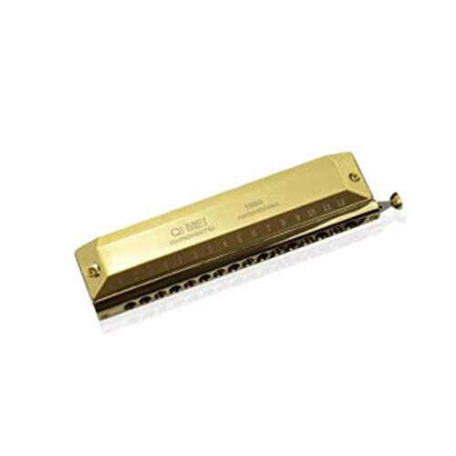 DLOZ chromatische Mundharmonika 12 Löcher 48 Töne 16 Loch Anfängerinstrument für Erwachsene 12-Loch Farbskala Rund Mundstück Silber Schwarz Gold (Gold)