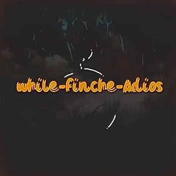 While-Finché-Adiós