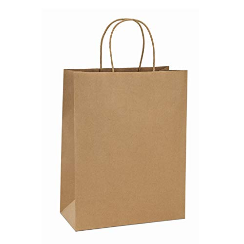 BagDream Shopping Bags 10x5x13 50Pcs Brown Kraft Paper Bags Paper Gift Bags, Merchandise Bags, Retail Bags, Party Bags, Gift Bags with Handles Bulk 100% Recycled Paper Bags