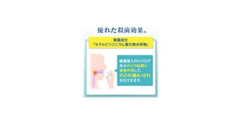 大正製薬『パブロンのどスプレー365』(指定医薬部外品)